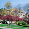 Crabapple trees with Balmer Hall in the background.  Balmer Hall, a classroom building, was built in 1961 and torn down in 2011 to be replaced by a new classroom/office building for the Foster School of Business