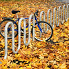 Bicycle parked outside Balmer Hall on a Fall day