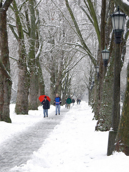 Students walking south on Memorial Way in the snow