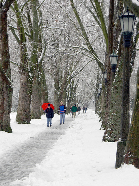 Students walking S on Memorial Way in the snow