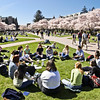 A class moves outside to enjoy springtime in the Quad