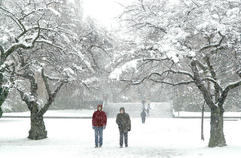 Students walking across the Quad in a snowstorm