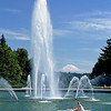 Drumheller Fountain and Mt Rainier provide an inspiring backdrop for studies at the University of Washington