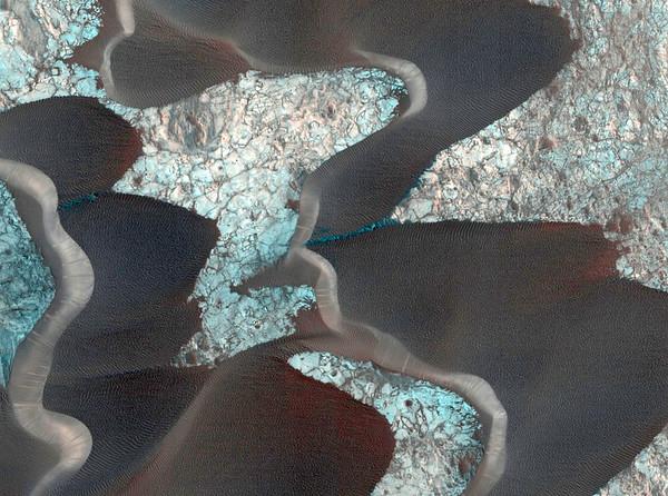 Mars No.  42-22377867
