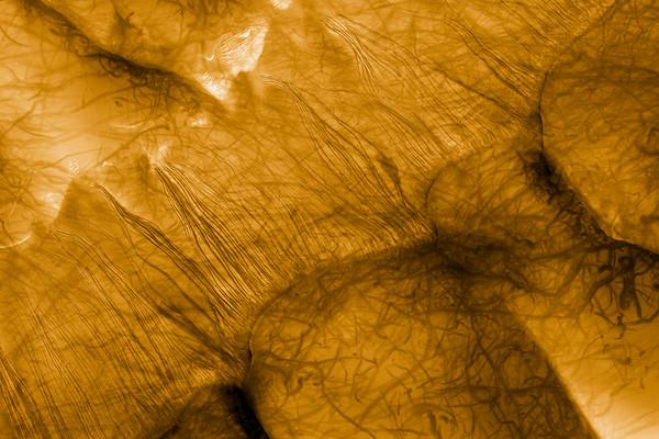 Mars No.  42-22377861