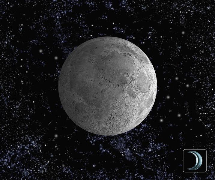 Mond No.  42-17368328