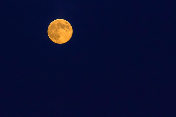 Mond No.  42-36577749