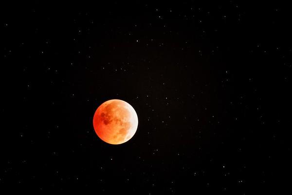 Mond No.  42-34012832