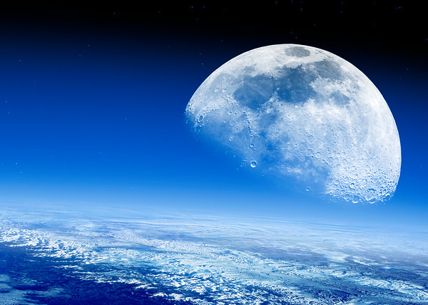Mond No.  42-46208842