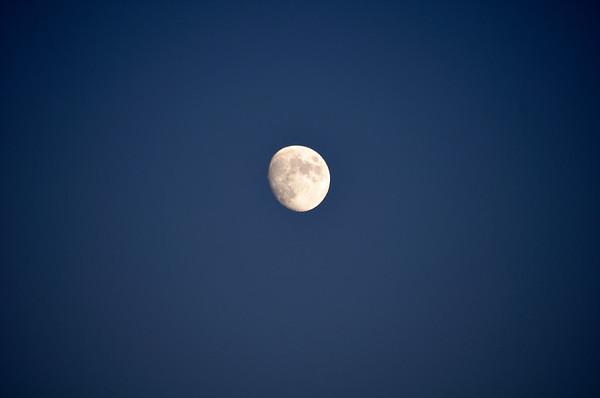 Mond No.  600-05524687