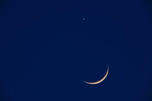 Mond No.  42-35224180