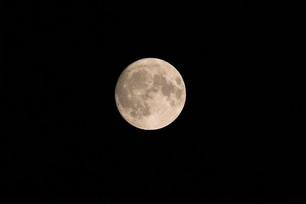 Mond No.  42-35454163