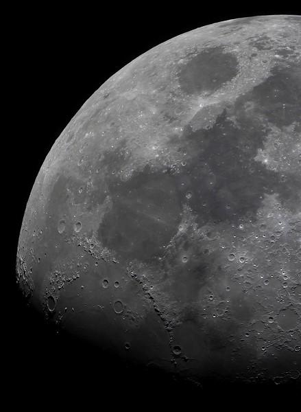 Mond No.  42-40283446