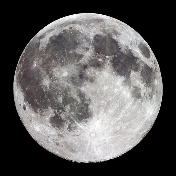 Mond No.  42-46200133