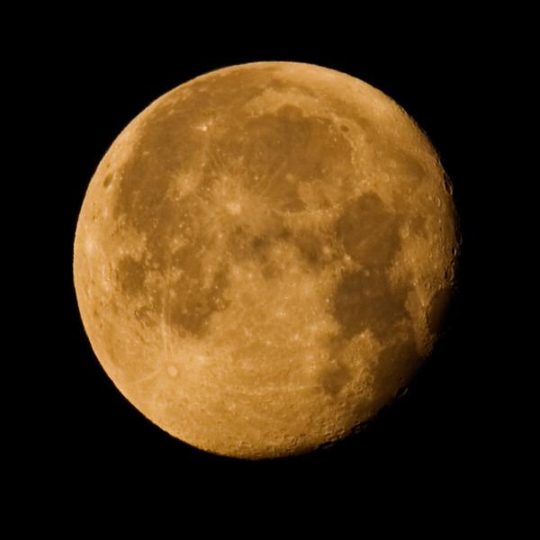 Mond No.  42-21832246