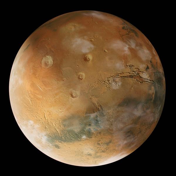 Planet # 42-21782490