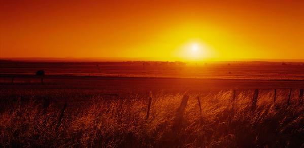 Sonne No. 600-02886363