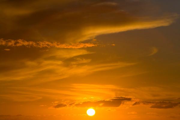 Sonne No. 42-22095955