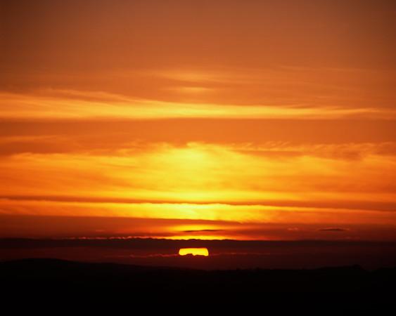 Sonne No. 42-16048081