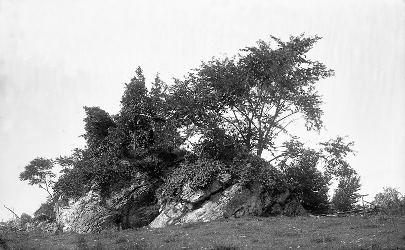 #1129 - Huge rock with trees growing out of it<br /> (repaired rgb)