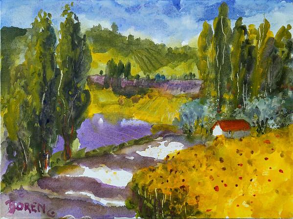 Sunflower Season 12x16 wc on canvas
