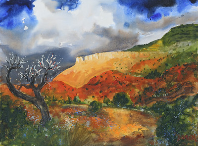 Ghost Ranch Beauty 18x24 WC