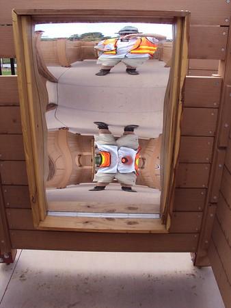 distorting mirror