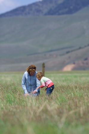 Montana  2007-06-11 IMG_1383