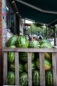 Caged Melons