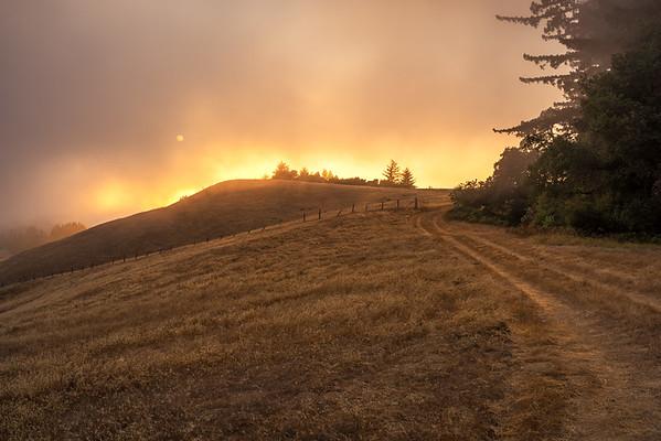 Foggy Sunset, La Honda Creek Open Space Preserve (Dyer Ranch), La Honda, CA