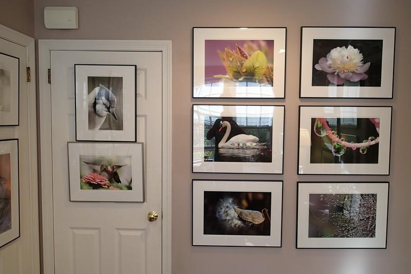 Smaller Gallery - Room II