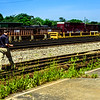 Walking the Rails at Terminus