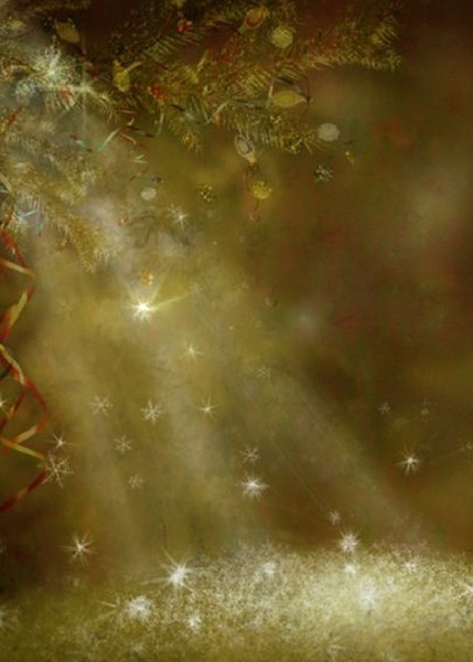 #65 Christmas Bokeh Lights