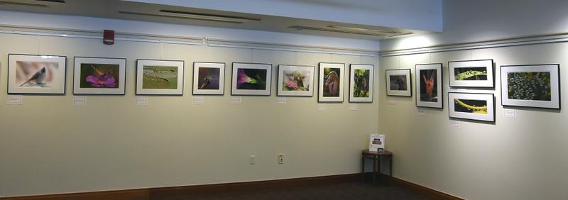 Part of 34 print exhibit at Cary Library, Lexington    (Mar - Apr  2019)