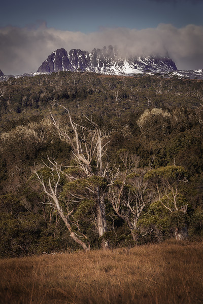 Cradle Mountain-1