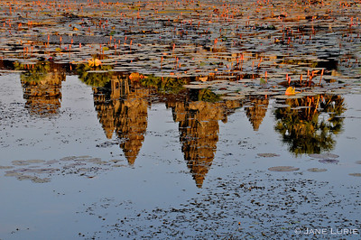 Reflections of the famous spires of Angkor Wat.