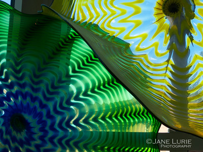 Colors, Dale Chihuly