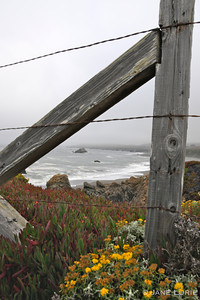 Fence, Fire Plant and Ocean, Mendocino, CA