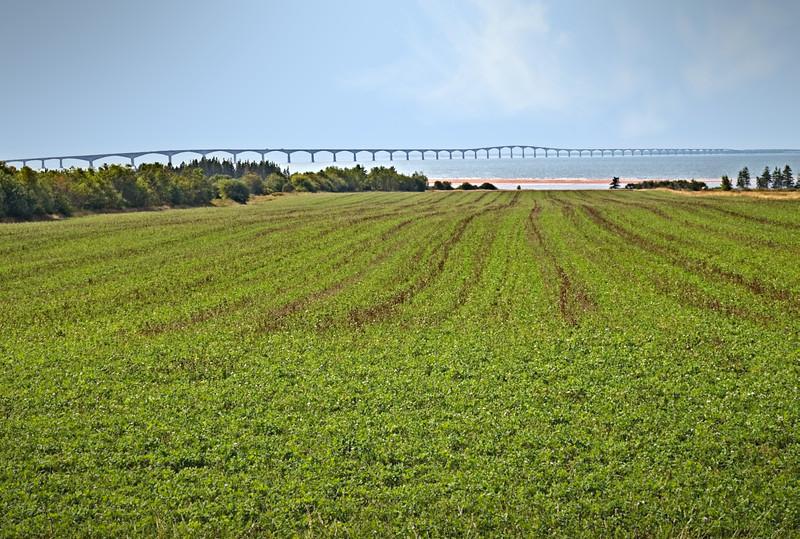 Le pont de la confédération