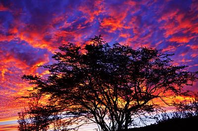 Waianae Mountains, Oahu
