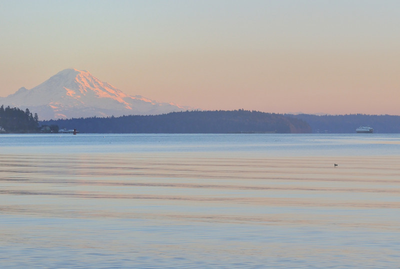 mt rainier and ferry