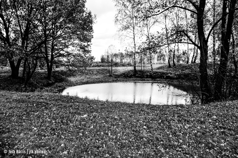 Pond Containing Human Ashes, near Bunker I, Auschwitz II-Birkenau, Poland, October 2018.