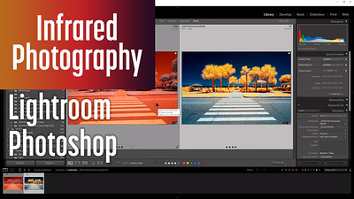 Editing Infrared Photo with Lightroom & Photoshop via Channel Swapping