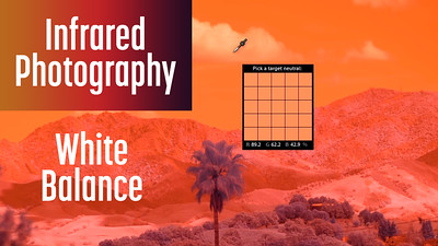Secret to White Balance in Infrared Photography
