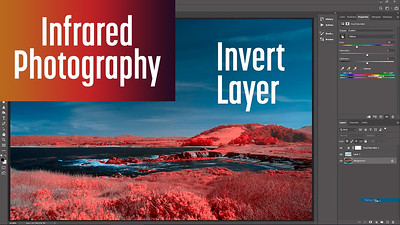 Invert Layer method for editing color Infrared image in Photoshop and Lightroom