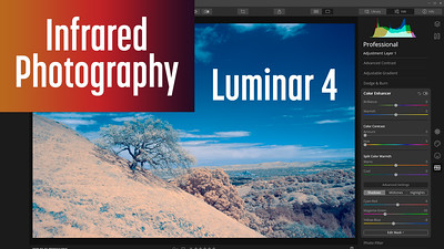 Editing Infrared Photos with Luminar 4