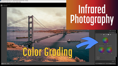 New Lightroom Classic Color Grading for Infrared Photography