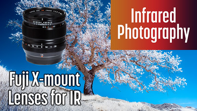 Which Fuji lenses should you use for infrared?
