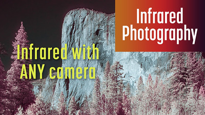 How to Shoot and Edit Infrared Photos with ANY Camera