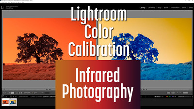 Infrared Photo edit with Lightroom Color Calibration